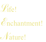 Life!